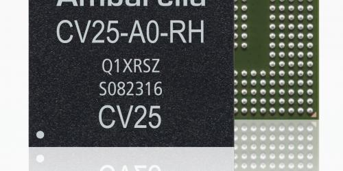 CV25 Chip Photo